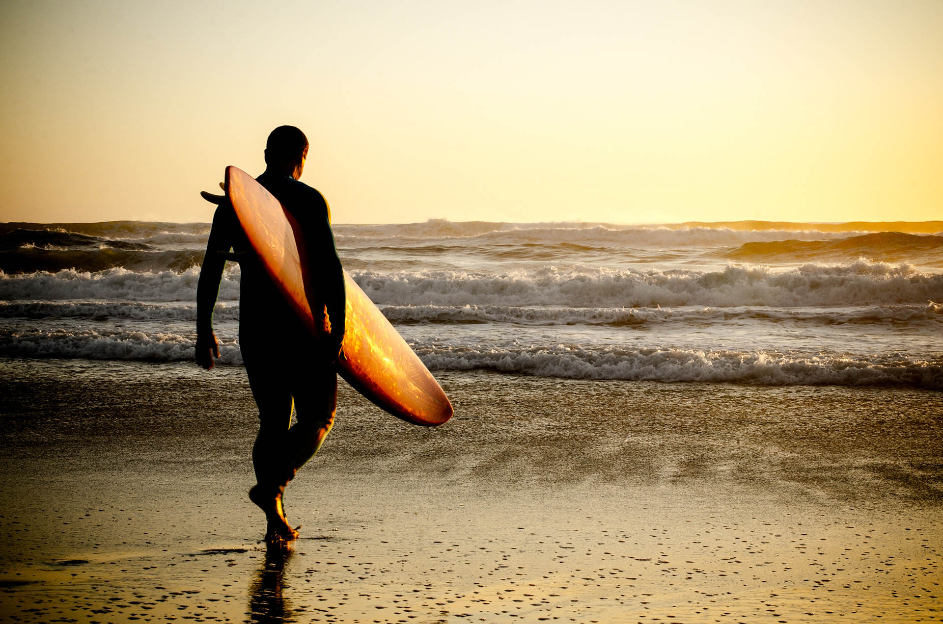 Surf Safely: Top 5 Mobile Security Apps